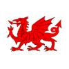 Cardiff Gezisi
